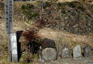 10kaminushi1.JPG